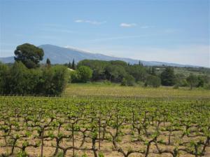 Mt Ventou