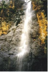 waterfall cedar ck